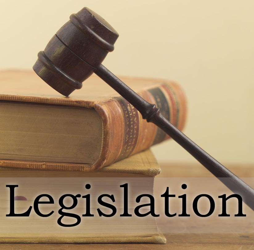 politics legislation and implications to patient Critical issues for the role of law and government regulation to clinical ethics issues that arise in the context of patient care.